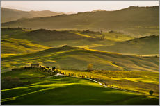 Gallery print  Evening light in Tuscany - Andreas Wonisch