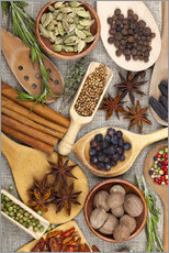 Wall sticker  Spices and Herbs II - Thomas Klee