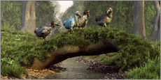 Wall Stickers  Dodos cross a stream - Daniel Eskridge