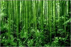 Wall Stickers  bamboo forest - GUGIGEI