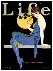 Wall Sticker  Life Magazine, July 14, 1927 - Clarence Coles Phillips