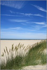 Wall sticker  Summer beach grass - Susanne Herppich