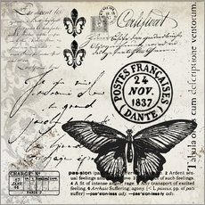 Wall sticker Vintages Butterfly