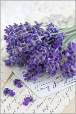 Wall Stickers  Lavender 4 - Andrea Haase Foto