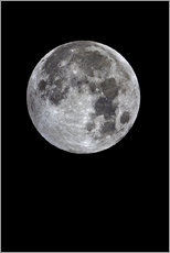 Wall sticker Full moon
