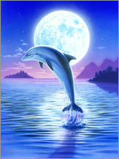 Gallery print  Day of the dolphin - midnight - Robin Koni