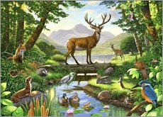 Gallery print  Woodland harmony - Chris Hiett
