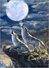 Gallery print  Midnight Wolves - Adrian Chesterman