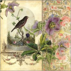 Gallery print  The Pet Bird - Aimee Stewart