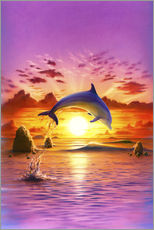 Wall sticker  Day of the dolphin - sunset - Robin Koni