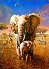 Wall Stickers  Elephants - Adrian Chesterman