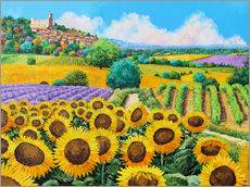 Gallery Print  Vineyards and sunflowers in Provence - Jean-Marc Janiaczyk