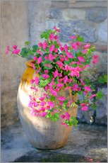 Wall sticker  Pink Patio Flowers  - Simon Kayne