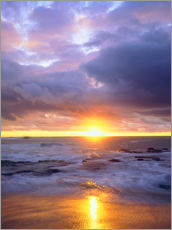 Gallery print  Evening at the Sunset Cliffs - Christopher Talbot Frank