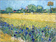 Arles with Irises flowers in the foreground