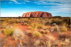 Ayers Rock in the evening
