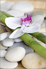 Bamboo and orchid II