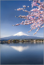 Mount Fuji and Lake Kawaguchiko in Japan during the cherry blossom season