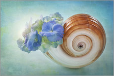 Blue flowers in a snail shell