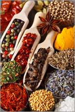 Colorful aromatic spices and herbs