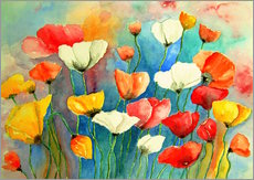 Colorful poppy, poppy flowers painting