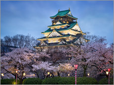 Osaka Castle in spring for cherry blossom
