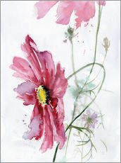 Cosmos flower watercolor