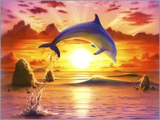 Day of the dolphin - sunset