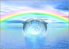 Dolphins Rainbow Healing