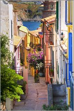 A narrow street with colorful houses