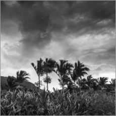 A stormy tropical scene in paradise of Brazil.