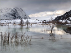 Frozen Lake | Lofoten, Norway
