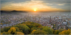 Freiburg at sunset