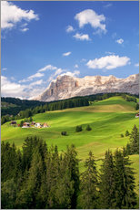 Green valley in South Tyrol