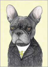 Hard Rock French Bulldog