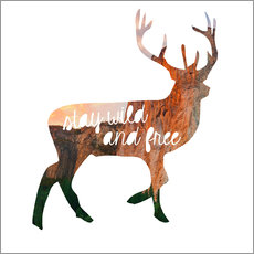 Deer - stay wild and free
