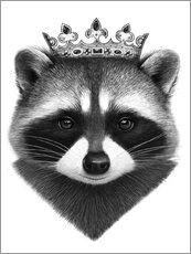 King raccoon