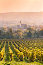 Church and vineyards in the Rhine valley