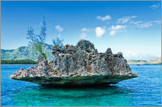 Coral Rock, Mauritius