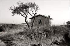 Rural idyll on the island of Sardinia