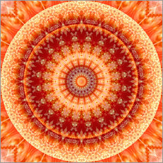 Mandala Joy of Living