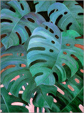 Monstera Love in Teal and Emerald Green
