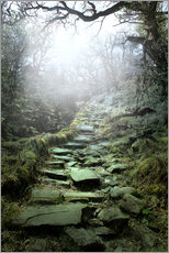 mystical stairs