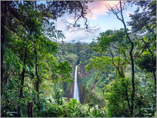 Rainforest and Waterfall, Costa Rica