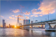 Rotterdam The Erasmus Bridge
