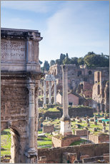 Ruins of the ancient roman forum