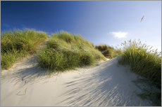 Sand dunes on the Baltic Sea