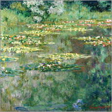The Waterlily Pond