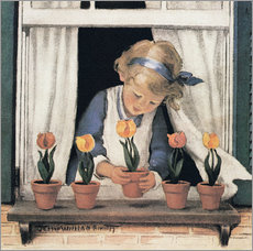 Potting tulips