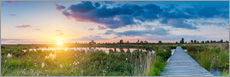 Sunset in the High Fens (hautes fagnes) Panorama